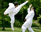 Taekkyeon, a traditional Korean martial art (2011) 이미지